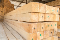 Особенности и преимущества деревянного бруса хвойных пород